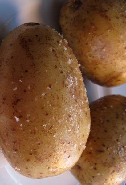 patata_kastanati