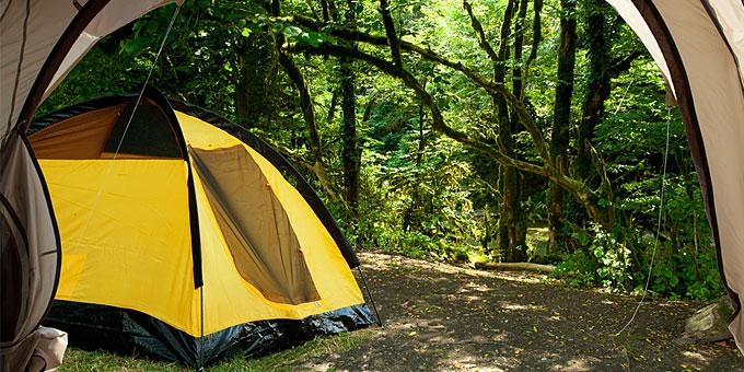 organwmena-camping