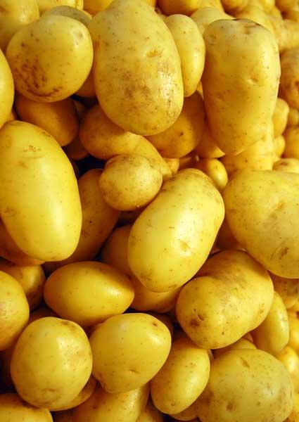 patates tyri