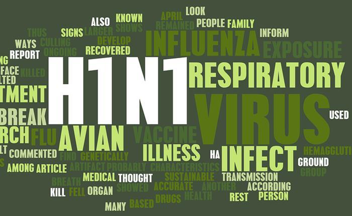H1N1 2