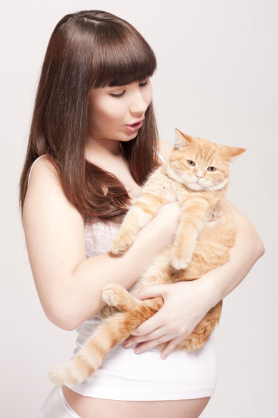 pregnant-with-cat